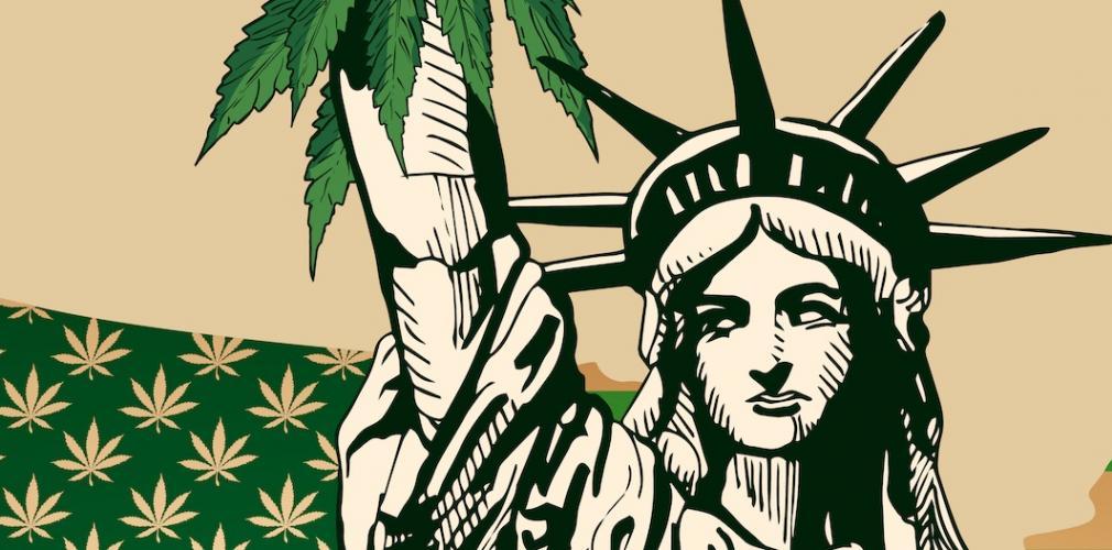 Image result for new york cannabis legislation illustration