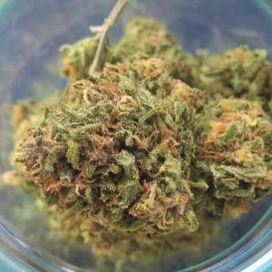 Photo of Green Crack by Forestlander