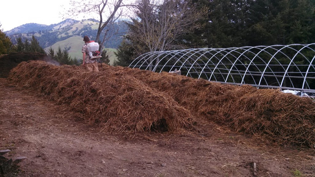 Compost piles being sprayed with Biodynamic preps 502-507