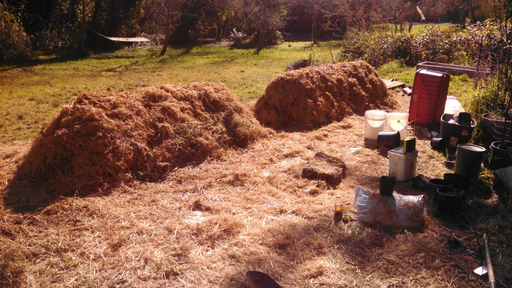 Completed Biodynamic cold composting piles