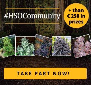 HSOCommunity Photo contest