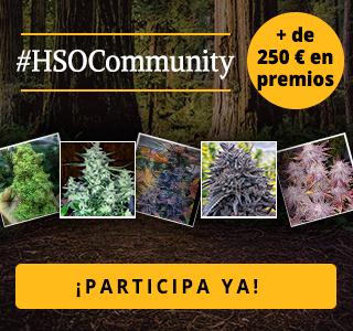 HSOCommunity Concurso de Fotos