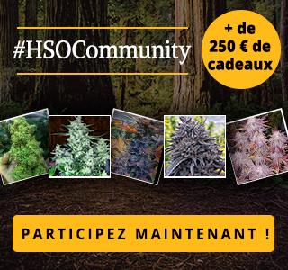 HSOCommunity Concours de photographie