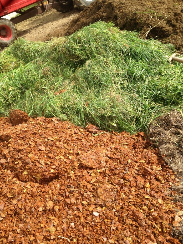 High quality cow manure, green grass and dried pressed cider apples.