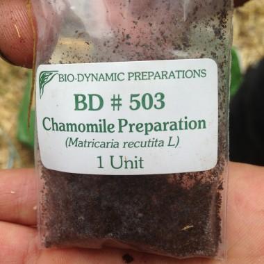 Préparation biodynamique 503#