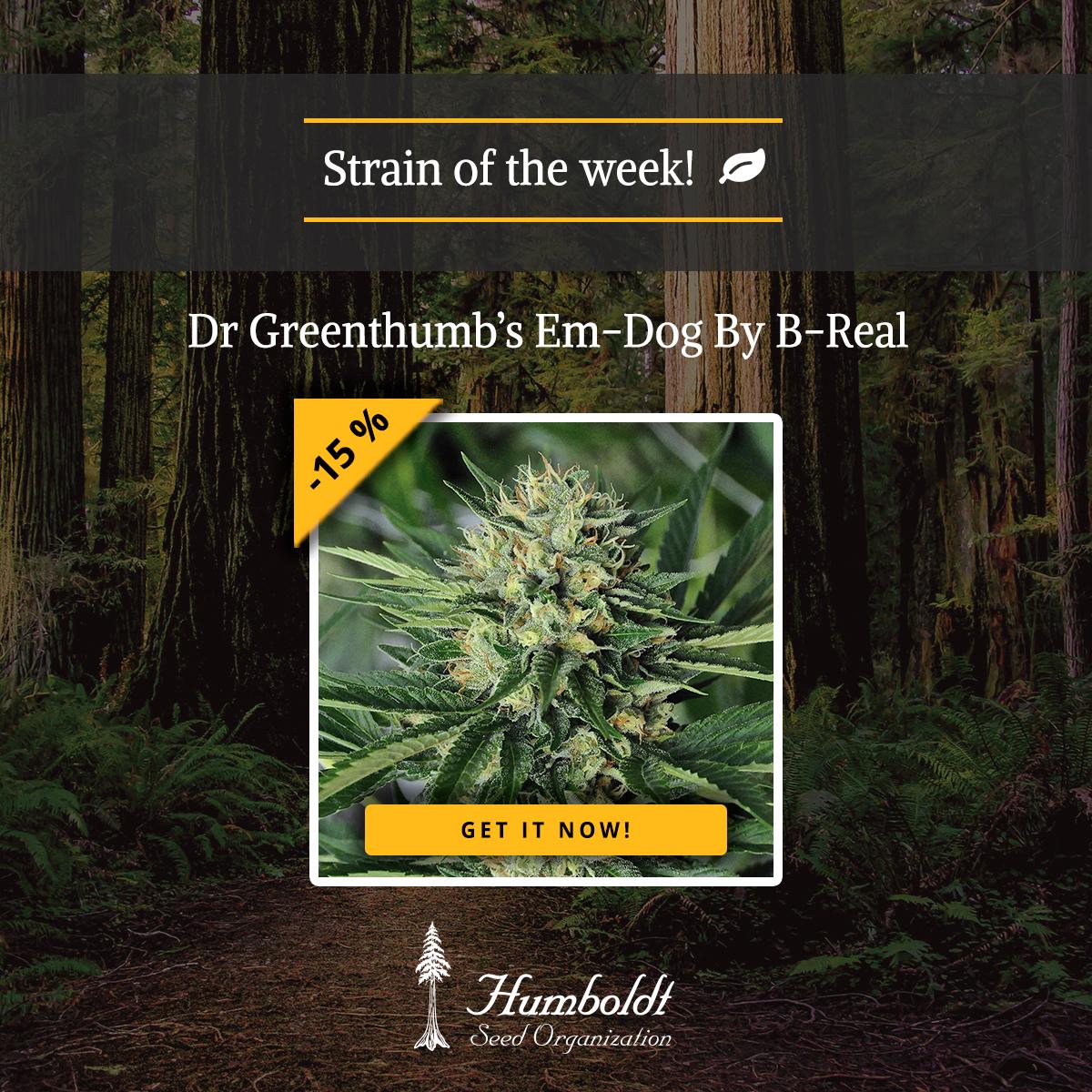 Dr Greenthumb's Em-Dog By B-Real