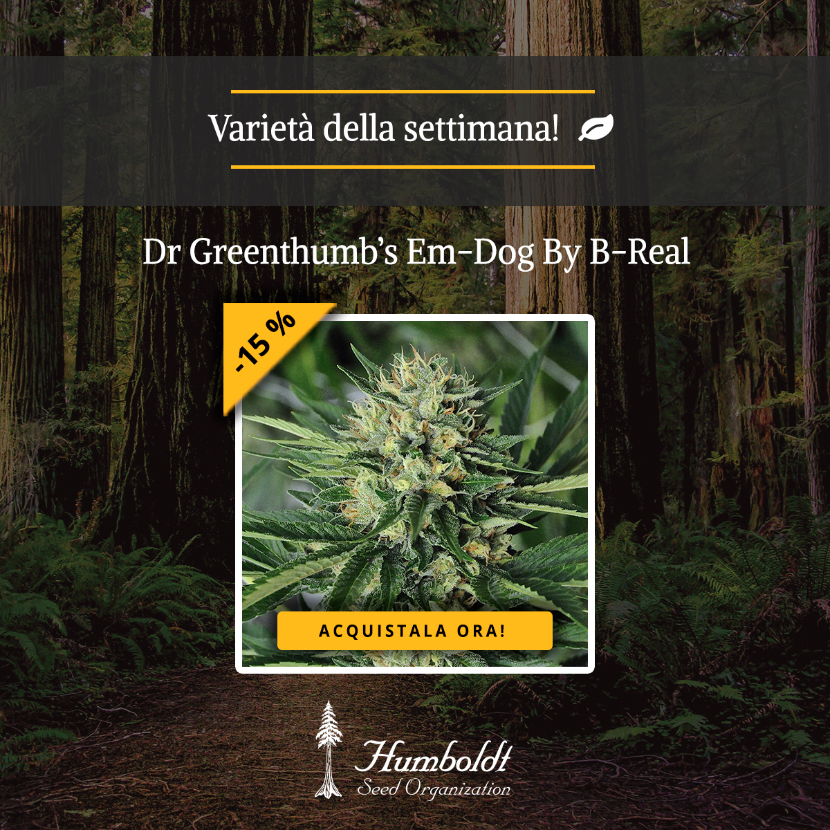 Dr Greenthumb's Em-Dog By B-Real