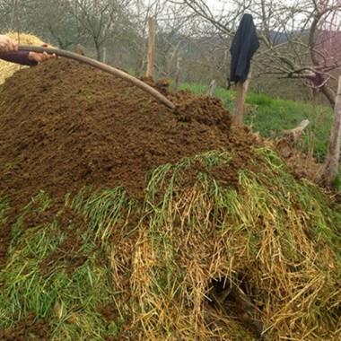 Finalisation de la préparation du compost